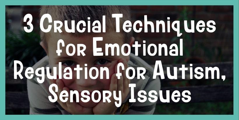 emotional regulation for autism