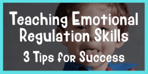 teaching emotional regulation skills