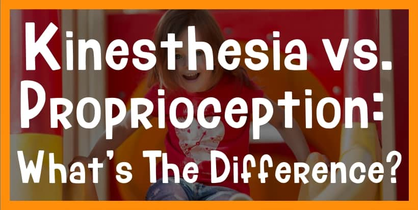 kinesthesia and proprioception