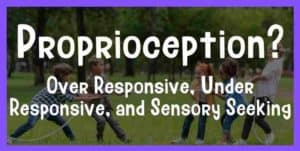 proprioception sensory seeking under responsive