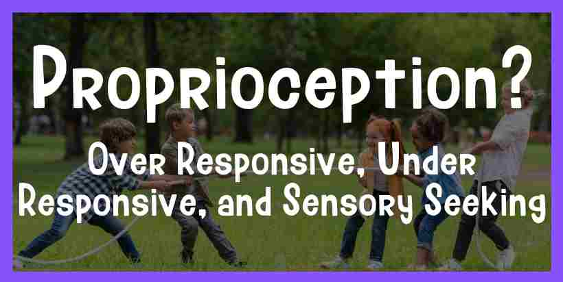proprioception sensory seeking under responsive