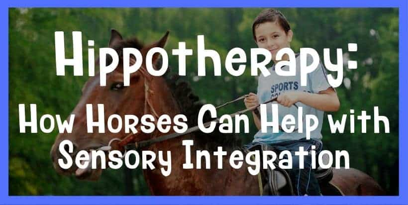 Hippotherapy: How Horses Can Help with Sensory Integration